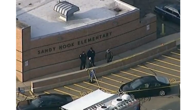 Sandy Hook group's final report calls for change