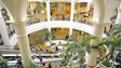 UK shopping mall utilizes IndigoVision surveillance system