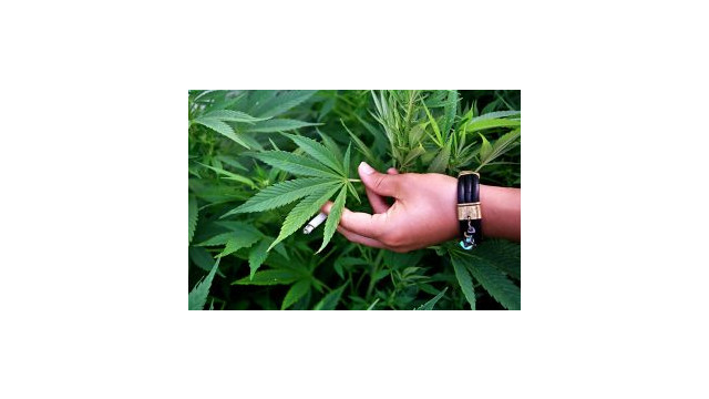 Marijuana_10489095.jpg