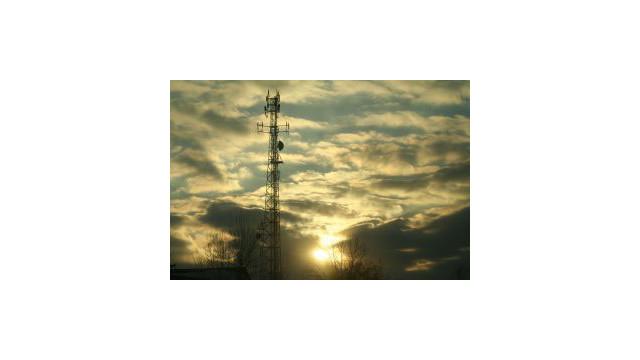 cellular_10493482.jpg