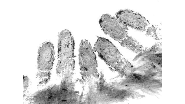 Fingerprints-sxc-steved_np3.jpg