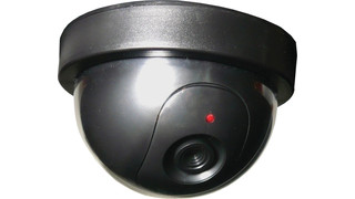Northern Tool + Equipment's Simulated Ceiling Dome Decoy Camera