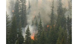 Bold Technologies recovers from impact of Colorado wildfires