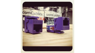 ComCables' Cat 5E and Cat 6 Purple Jacks