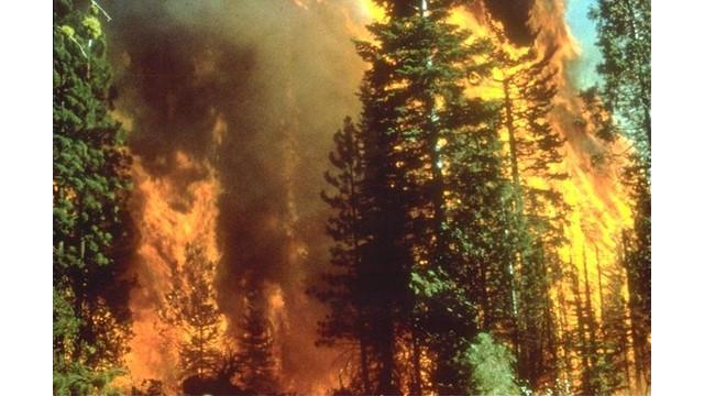 Wildfire-in-California.jpg
