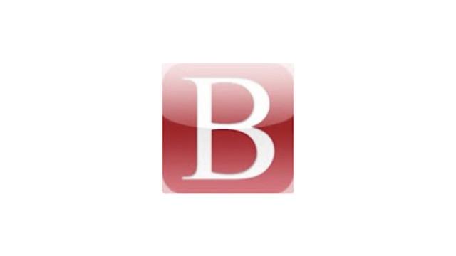 bitzer-mobile-logo_10759255.jpg