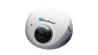 EverFocus Compact IP Fixed Domes