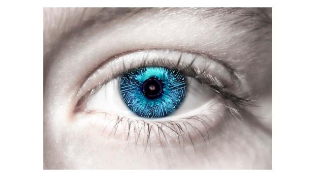 IDIS-eye-image.jpg