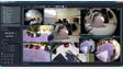 WavestoreUSA V5.46 Video Management Software Suite